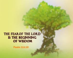 psalm-111-10-the-fear-of-the-lord-is-the-beginning-of-wisdom